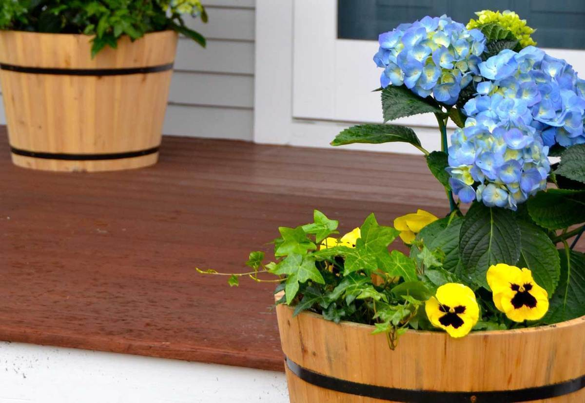 3 Easy Ways to Create Curb Appeal on a Budget